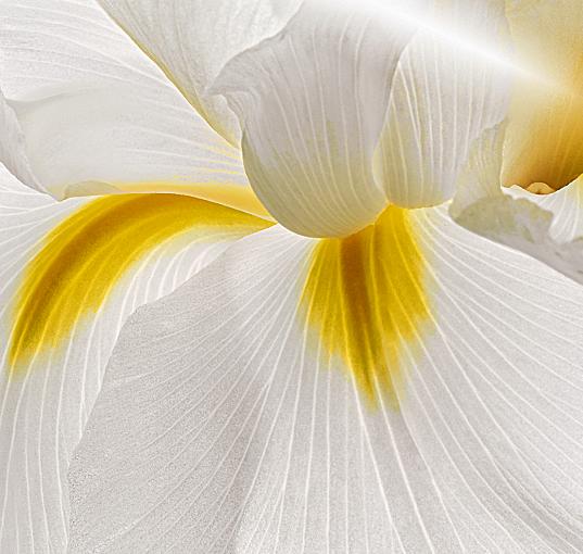 Naši etički principi